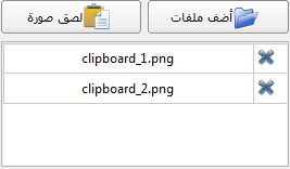 Here you can add additional files to the technical report